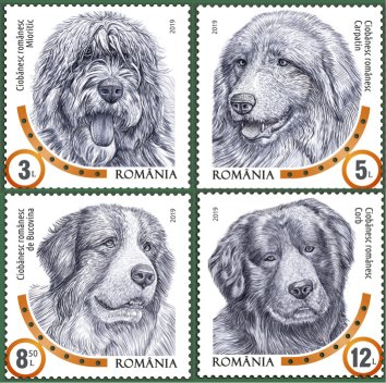 Romanian Stamps Collectors page